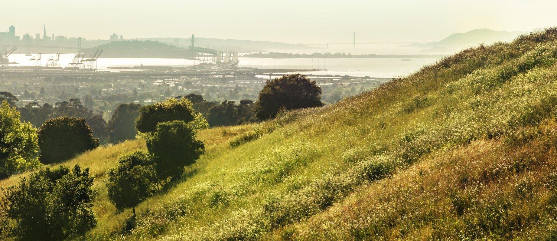 Bay Area in Northern California