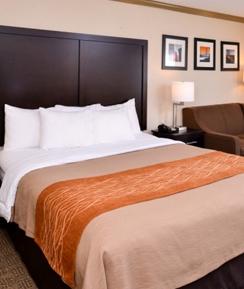Plush King Bedding and Spacious Accommodations