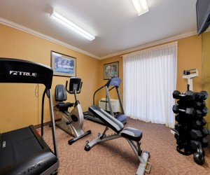 Comfort Inn Castro Valley - Excercise Room